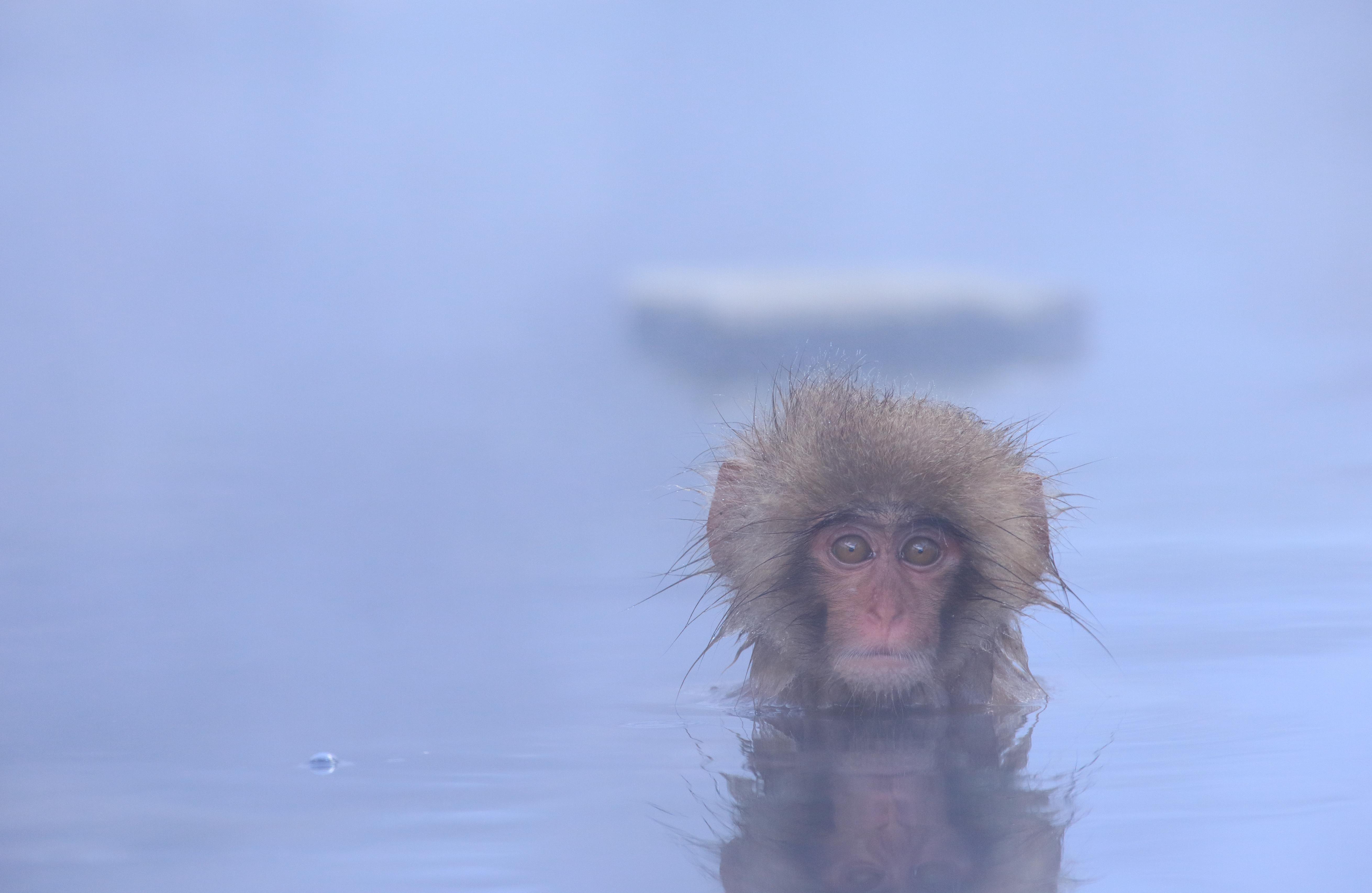 肩こり・頭痛解消の為の入浴の写真