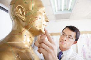 遠絡治療の整骨院「宮谷小交差点前せいこついん」の経路人形をみる医師のイメージ