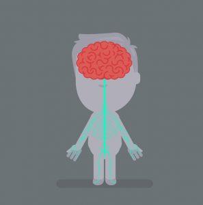 腰のヘルニア治療の整骨院「宮谷小交差点前せいこついん」の脊髄イラスト